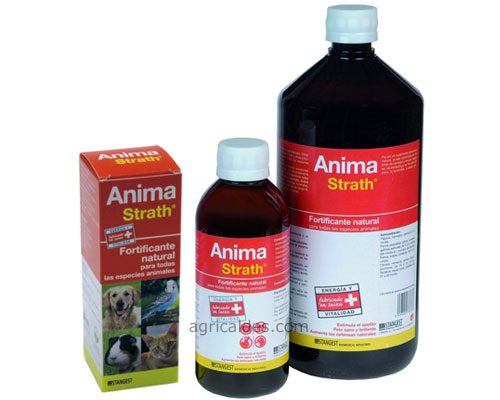 Anima Straht 250 Ml, Reconstituyente Para Mascotas
