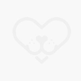Calcetines para perro grises con topos rojos