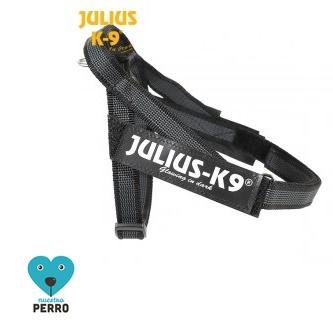 Arnes Julius K9 Cinta Negro